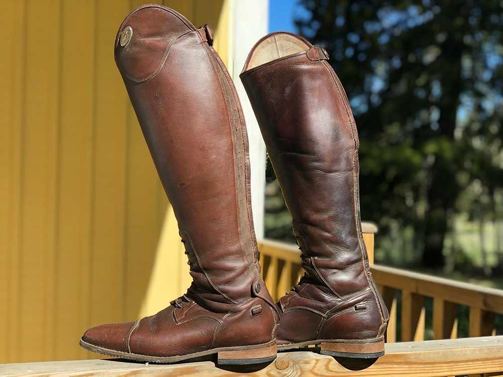 Petrie anky elegance | Dressuurlaarzen bruin | Hästar